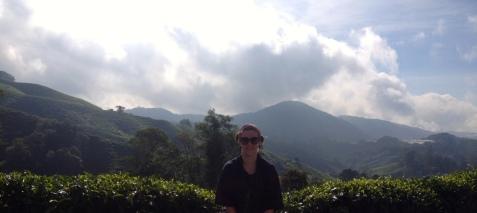 Cameron Highland tea plantations